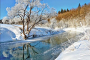 【CT2月活动】冬日美景